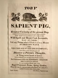 """Toby the sapient pig, the greatest curiosity of the present day."""