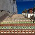Santa Barbara steps.