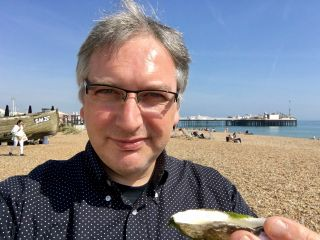 It's a nice day for an oyster on the beach.