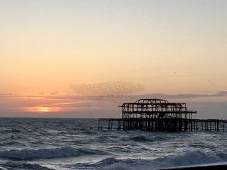 Shortly before sunset, I invited everyone in the @Clearleft office to down tools and join me in watching the murmuration of starlings over the West Pier.