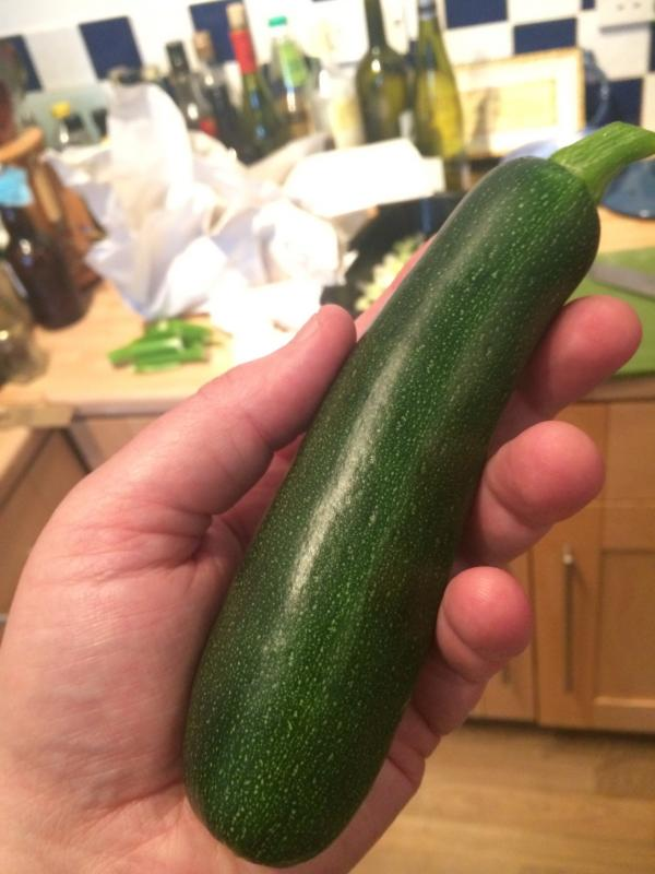 Harvesting our first courgette of the year.