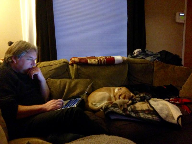 Coding with doggies.