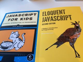 One programming language with two demographics: JavaScript for kids, and JavaScript for grown-ups.