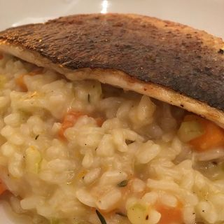 Sea bass on butternut squash risotto.